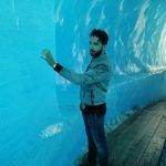 Luis tobajas ice